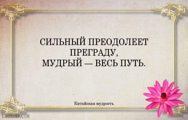Сильный преодолеет преграду, мудрый — весь путь. http://orilyuks.ru/pravila-jizni/frazy-citaty-i-aforizmy.html