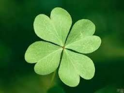 Resultado de imagen para trebol de cuatro hojas suerte