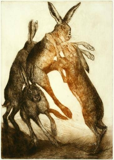 boxing hares - Google Search