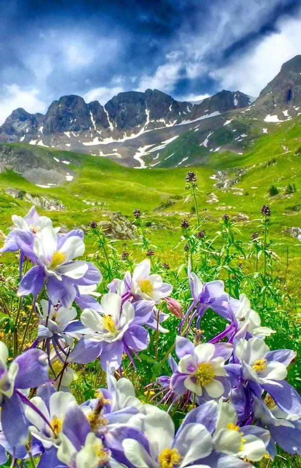 American Basin - Colorado