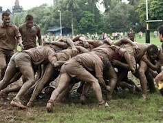 Rugby hogs..