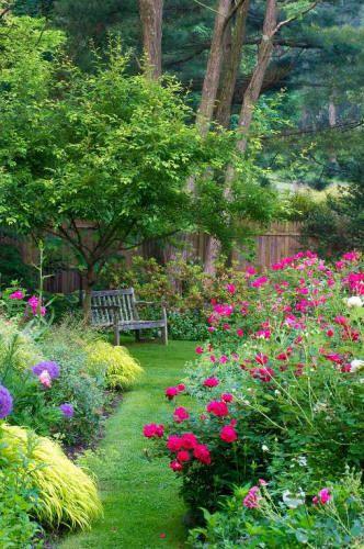 Massifs dans le jardin / flowers in the garden