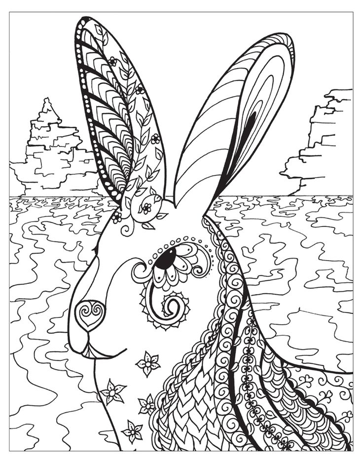 1070 Best Images About Adult ColouringAnimalsZentangles
