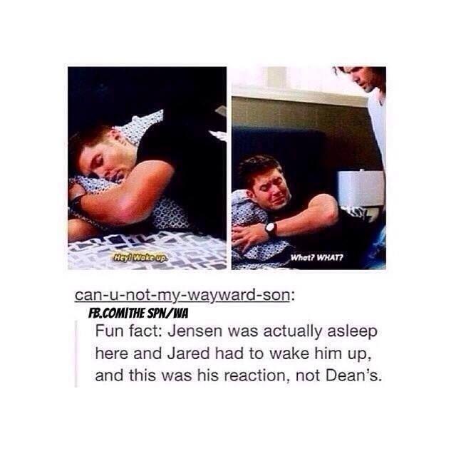 Gotta love Jensen's improv... - Don't Hate The Geek... If I were an actress...