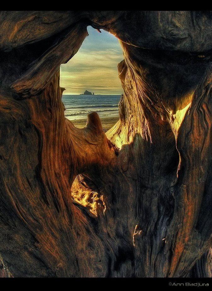 Rialto Beach in Olympic National Park