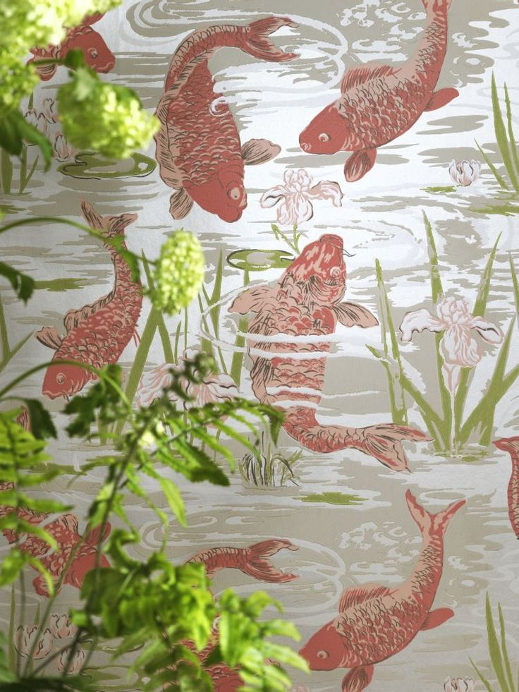 1000 images about trends animal magic on pinterest for Koi wallpaper for walls