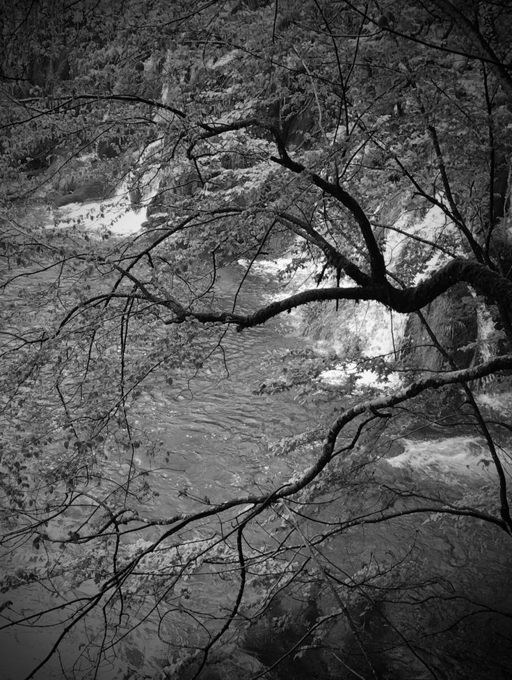 Plitvice Lakes, Croatia Leigh Ellen Williams  © 2016