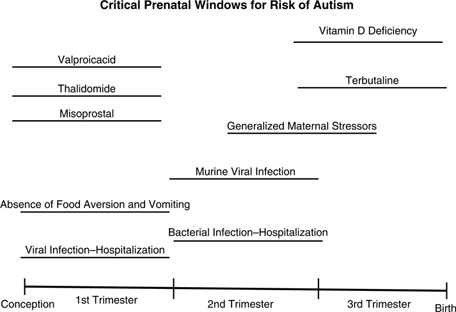 Putative critical windows of developmental vulnerability for autism based on reports involving potential environmental risk factors. (human studies & animal studies). References for each risk factor: Viral Infection—Hospitalization (92), Absence of Food Aversion and Vomiting (44), Misoprostal (70), Thalidomide (109), Valproic Acid (37), Bacterial Infection—Hospitalization (92), Murine Viral Infection (110), Generalized Maternal Stressors (102), Terbutaline (111), and Vitamin D Deficiency…