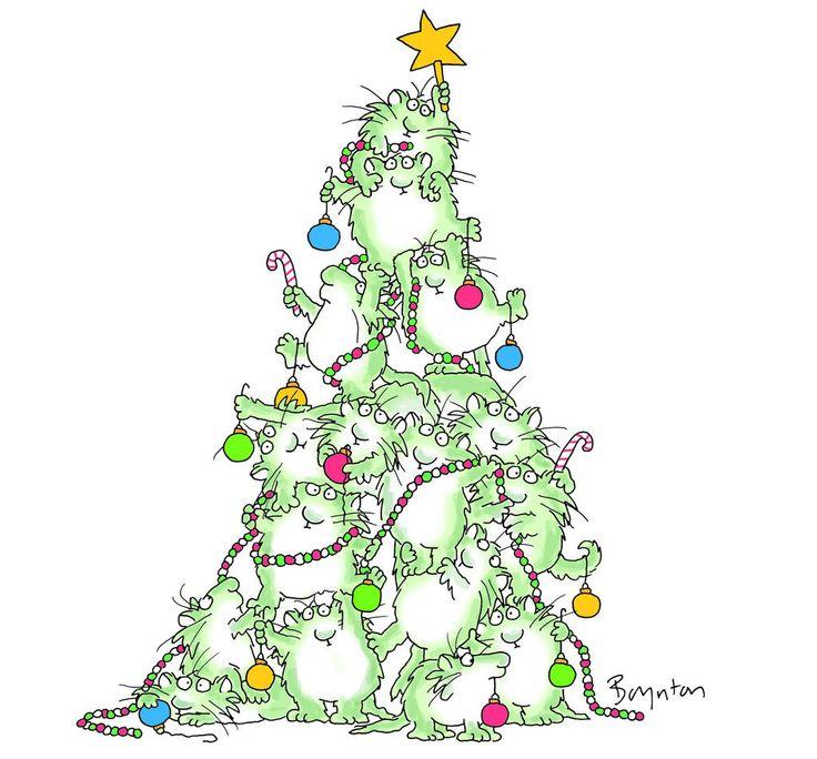 Twitter / SandyBoynton: Finally got the Christmas tree ...