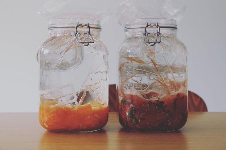 Ik fermenteer voor de eerste keer... Benieuwd hoe deze gefermenteerde wortelen en tomatensaus binnen drie dagen smaken!