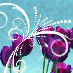 E o zi minunata... e ziua ta! La multi ani! http://ofelicitare.ro/felicitari-de-la-multi-ani/e-o-zi-minunata-739.html