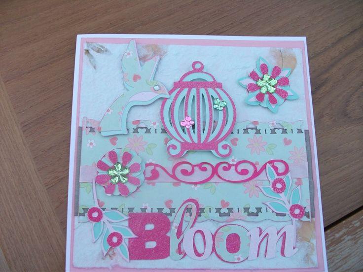 using bloom cartridge