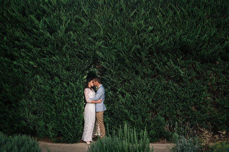 green hedge wedding couple photos gabriel veit brisbane photographer