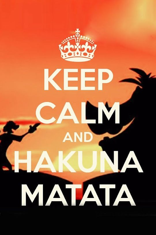 "Keep calm and hakuna matata. We are sending to you this picture. We likes this picture because we like the film ""EL REY LEON"" This picture is very nice and funny."