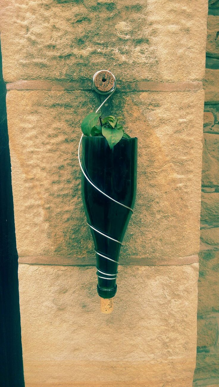 Prosecco bottle, cut and mounted to wall using cork and garden wire.