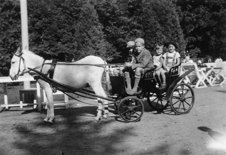 Korkeasaari   Pohjanpalo Jorma 4.9.1938   Helsingin kaupunginmuseo   Korkeasaari. Pohjanpalon lapset ponivaljakossa. -- repronegatiivi vedos, filmi paperi, mv