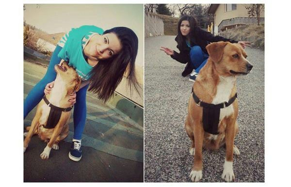 Life's better with a dog!<3 #crazy