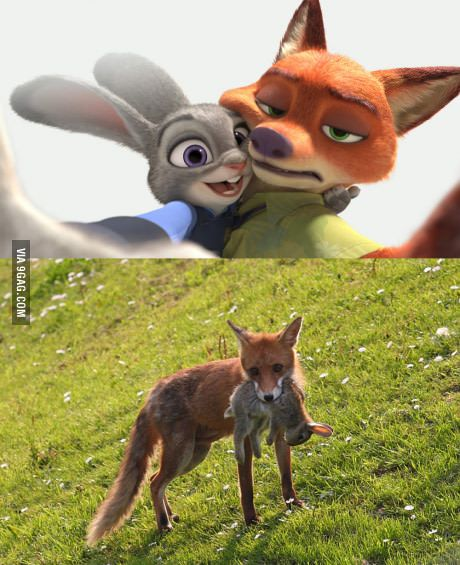 Zootopia in real life