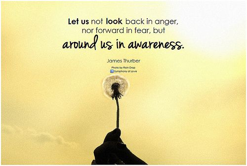 James Thurber Let us not look back in anger, nor forward in fear, but around us in awareness - http://www.fitrippedandhealthy.com/james-thurber-let-us-not-look-back-in-anger-nor-forward-in-fear-but-around-us-in-awareness/  #Supplements #Fitness #Weightlosstips #DietTips