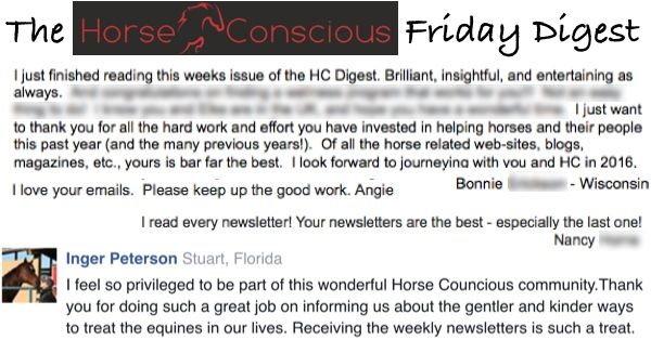 """""""..love the newsletter, look forward to each each Friday to where you are taking us next! Keep up the good work"""" - Joanne, Redmond, Washington"""
