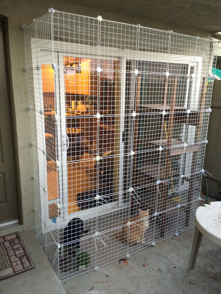 Catio sliding glass door with a cat door Outdoor cat