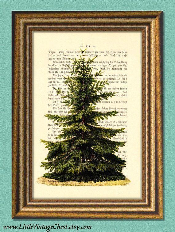 EVERGREEN TREE  Fir Tree  Dictionary Art by littlevintagechest, $3.00