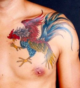 Rooster Tattoo Designs                                                                                                                                                                                 More