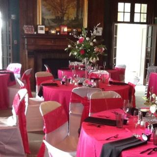 Best 25 zebra wedding ideas on pinterest pink zebra cakes diy pink and zebra wedding httppartyplannersplusweddings junglespirit Images