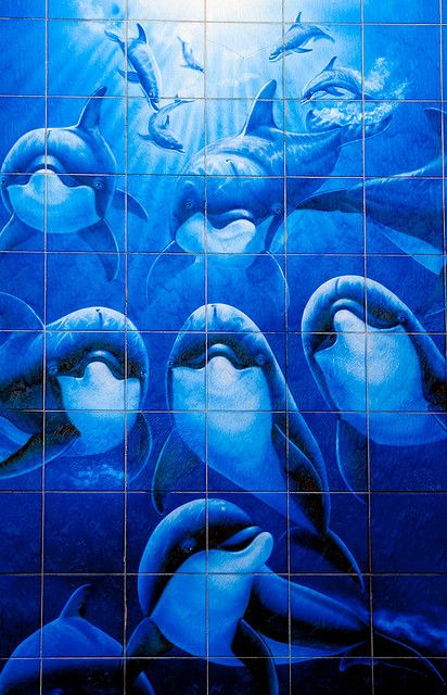 192 best dolphin art images on pinterest dolphins