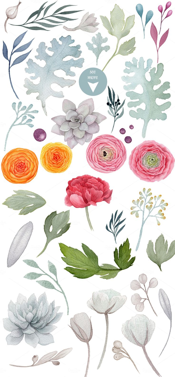 Fantasia - watercolor flowers pack by Watercolor Nomads on Creative Market