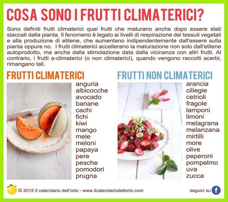 Cosa sono i frutti climaterici?