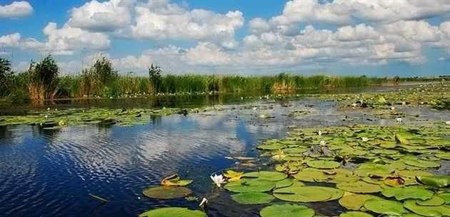 """""""Avem unul dintre cele mai importante obiective din lume: Delta Dunării. Romniei nu-i lipseste nimic"""", a spus ministrul Turismului, Mircea-Titus Dobre la un post de televiziune"""