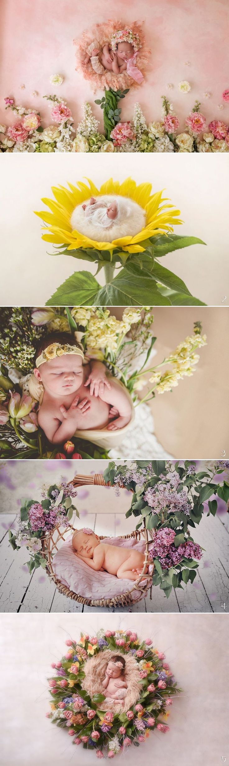Newborn photography has a special place in our hearts, especially when artists come up with out-of-the-box ideas that are a little more creative than the standard shoot! Combining imagination with artistry and photography, these amazing work we are about to share are sure to captivate your hearts. Get inspired and create your own masterpiece! …