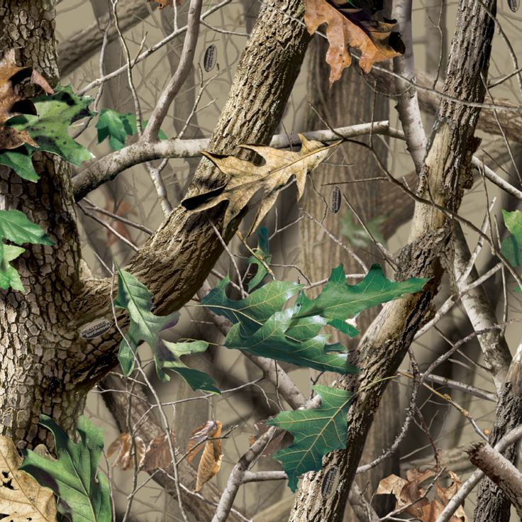 Camouflage Wallpapers: 17 Best Ideas About Realtree Wallpaper On Pinterest