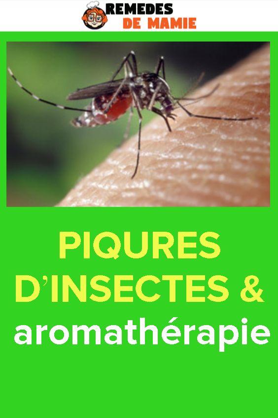 PIQURES D'INSECTES & aromathérapie   Piqure insecte ...