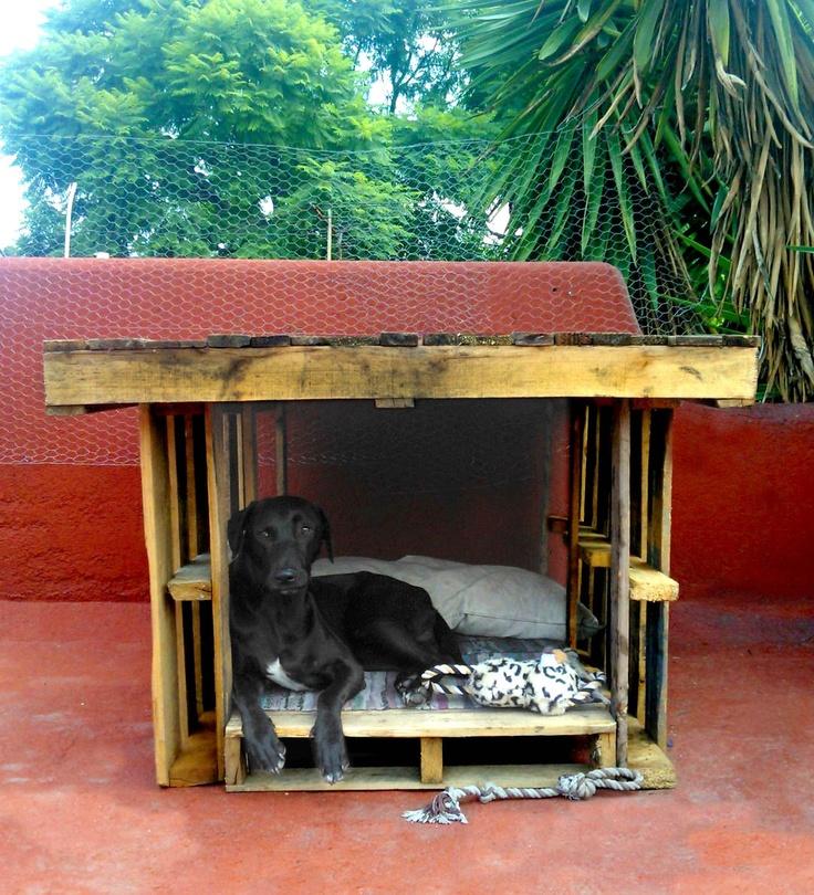 Casa de perro fusionando pallets pinterest - Como hacer una casa para perro grande ...