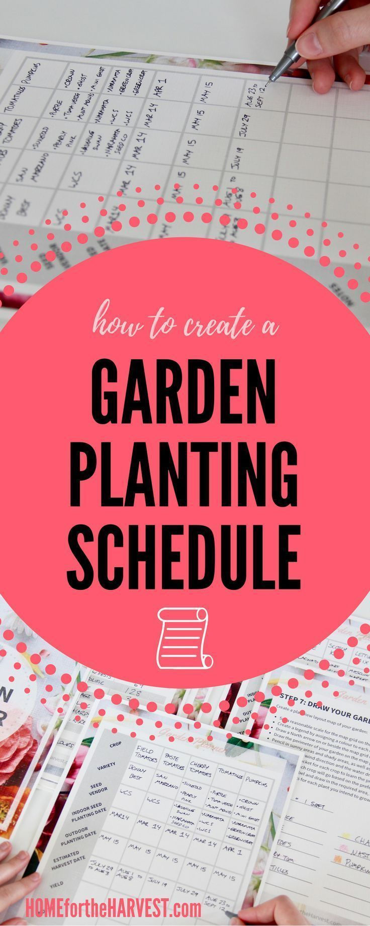 Creating a planting schedule for your garden will help you take out all the guesswork about when to plant your garden! Create a calendar for your plants to go outdoors, and watch the weather to ensure everything is on track! This post will show you exactly how to create a schedule for your garden, and even includes a free garden planner!
