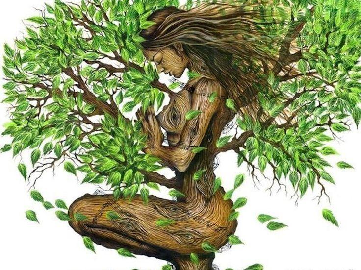 I Celti associavano ad ogni periodo dell'anno un albero differente. L'albero, simbolicamente, rappresenta la vita naturale.