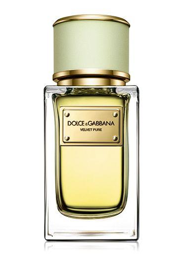 Velvet Pure, fresh floral perfume for women   Dolce & Gabbana Beauty