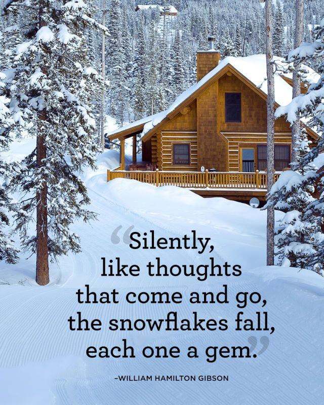 """""""Silently, like thoughts that come and go, the snowflakes fall, each one a gem.""""    - CountryLiving.com"""