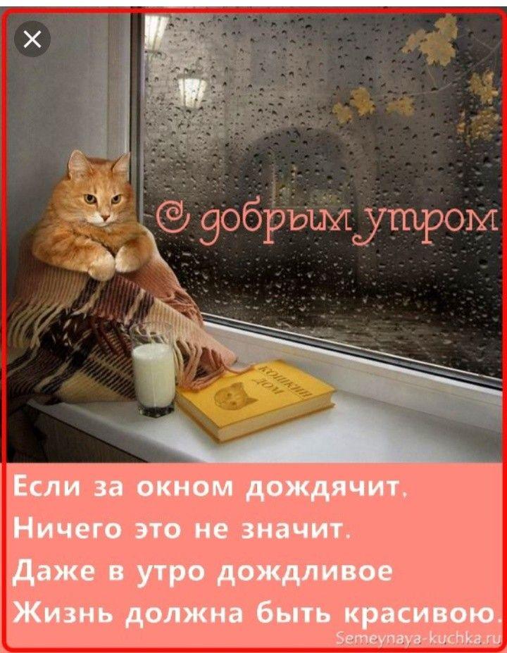 Для мастер, открытки доброе утро дождливое