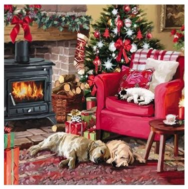 Cosy Christmas Charity Christmas Card Pack (8 cards per pack)