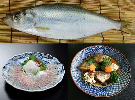 """農林水産省 maff からシェア     【ととけん】     岡山県以外ではほとんど食卓に上ることがないこの魚(写真上)は、透き通った白身は旨みが強く大変美味なのですが、小骨が多いのが玉にキズ。「○○の味、小骨がなければ献上品」といわれています。○○に入る魚はどれですか。   ①カド ②ナカズミ ③ハダラ ④ヒラ   これは、日本さかな検定(愛称:ととけん)の1級の問題です。  """"魚を学び旬をおいしく食す""""「さかなの国 ニッポンの検定」として今年で8回目の開催を迎えます。毎年、魚に関心のある一般の方から、水産関係、飲食店のプロまでが挑戦。受検者も園児からお年寄りまで幅広く、親子三代で受検、合格という方もいるそうです。   さて、問題の答えは④ヒラ。  その名のとおり平べったい魚で、薄造り(写真左下)にしても煮付け(写真右下)にしても上品で深い味わい。でもハモに負けず劣らず小骨が多いため、残念なことに岡山県以外で食べられることはほとんどありません。ちなみに①はニシンの、②はコノシロの成長段階名。③はサッパの地方名です。…"""