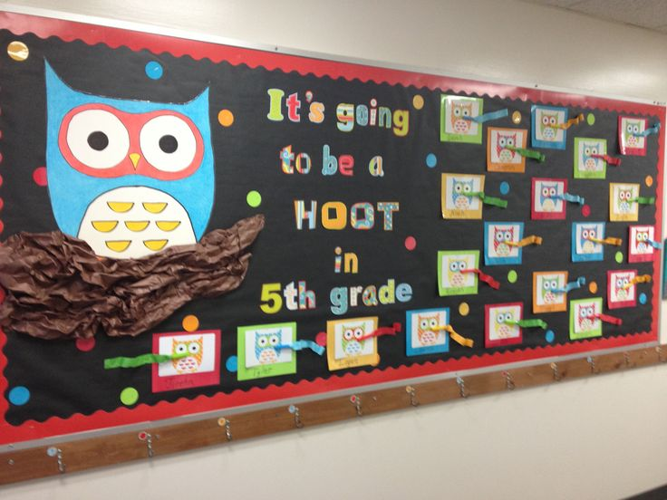 12 best Bulletin boards images on Pinterest Owl theme classroom
