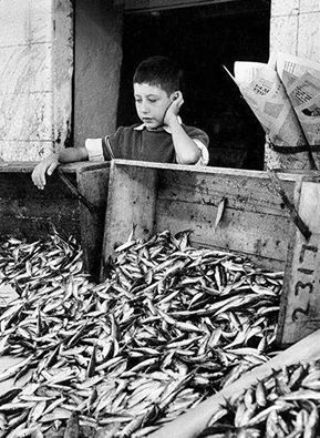 ΠΕΙΡΑΙΑΣ - 1962 - O ΜΙΚΡΟΣ ΨΑΡΑΣ - ΦΩΤ. HUBERTUS HIERL