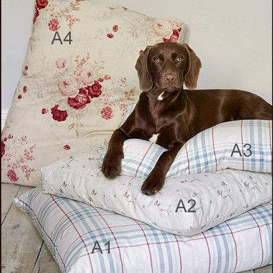 Dog beds - The Dormy House