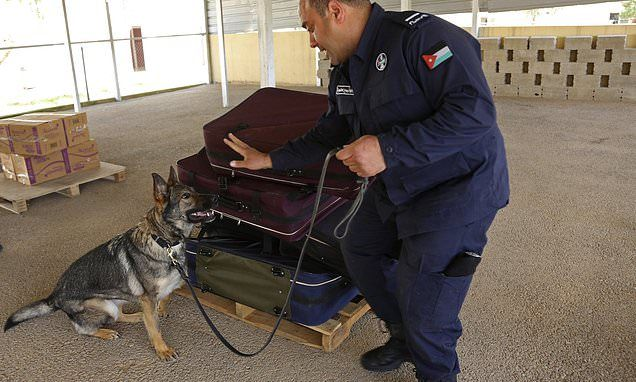US anti-terror training abroad includes K-9, cyber security