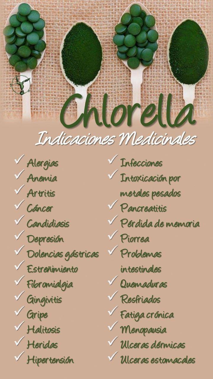 Chlorella Propiedades Beneficios Alga Candida Clorella Y Espirulina Piel Efectos Para Niños Clorofila Beneficios Hierbas Curativas Superalimentos