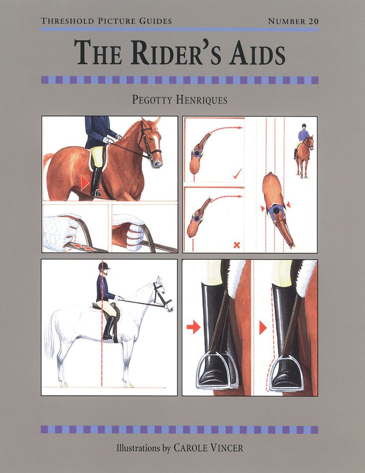 Threshold Picture Guide No. 20 Rider's Aids by Pegotty Henriques | Quiller Publishing. A rider's guide to a clear and logical understanding of the aids, which will improve riding skills and promote harmony between horse and rider. #horse #pony #aids #position #training