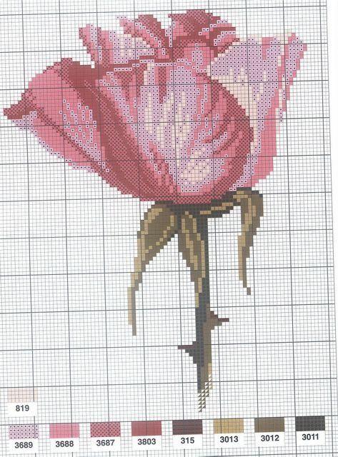 [flor-ponto-cruz-grafico-14%255B2%255D.jpg]